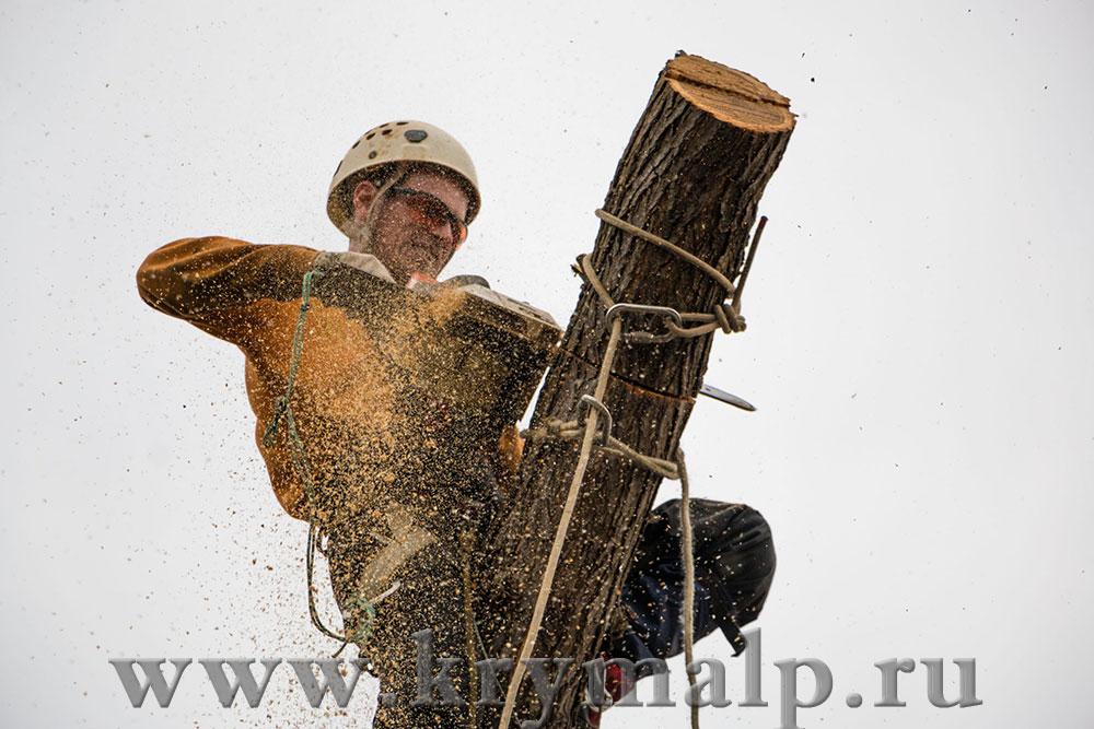 Промышленный альпинизм в Симферополе